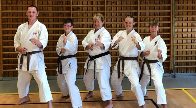 Prova på Karate