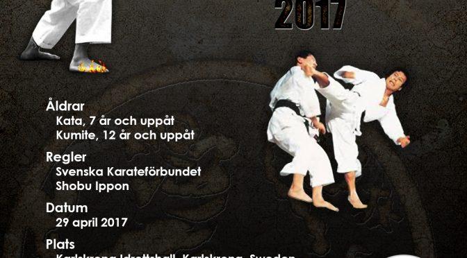 Scandinavia Shoto Cup 2017